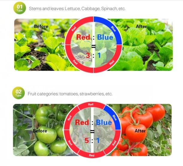 relacion de color para lámparas de cultivo