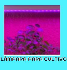 LÁMPARAS LED PARA CRECIMIENTO DE PLANTAS